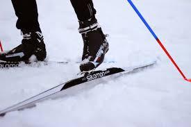 telemark ski length