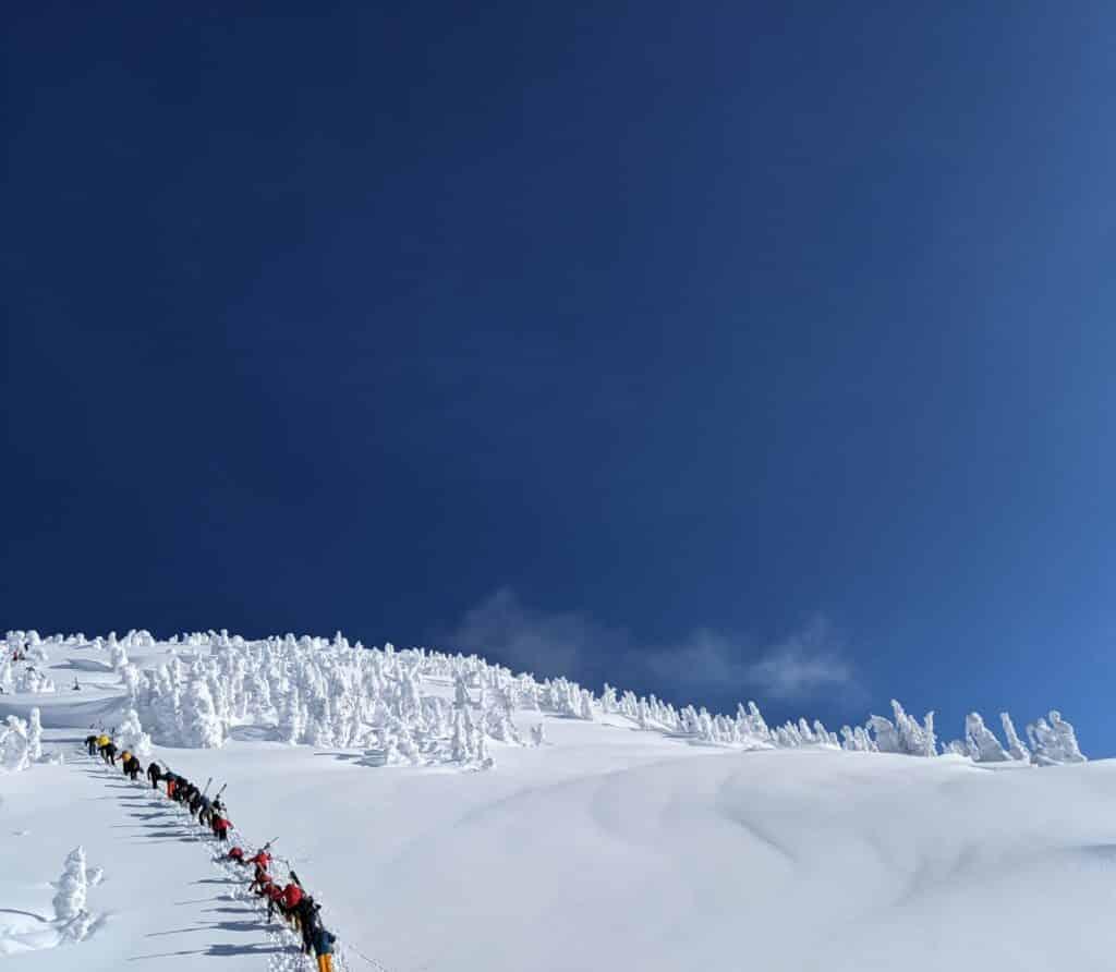 natural snow
