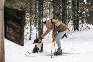 The Best Ski Poles for Cross Country