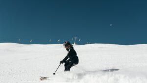 Best Intermediate Ski Poles